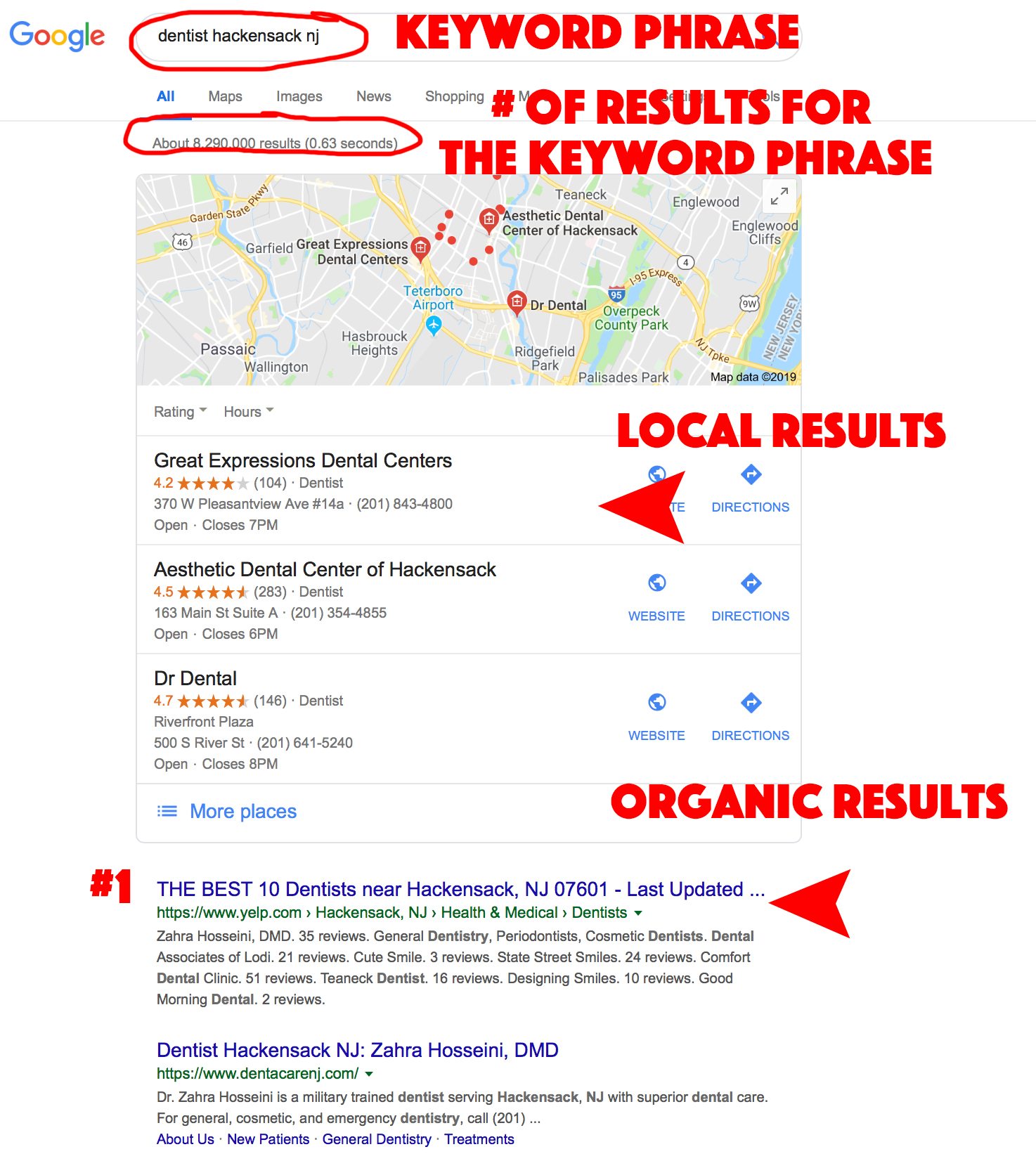 Organic and Local Search Results
