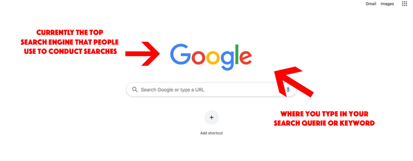 google search bar to find website results screenshot