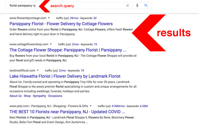 NJ SEO search query example